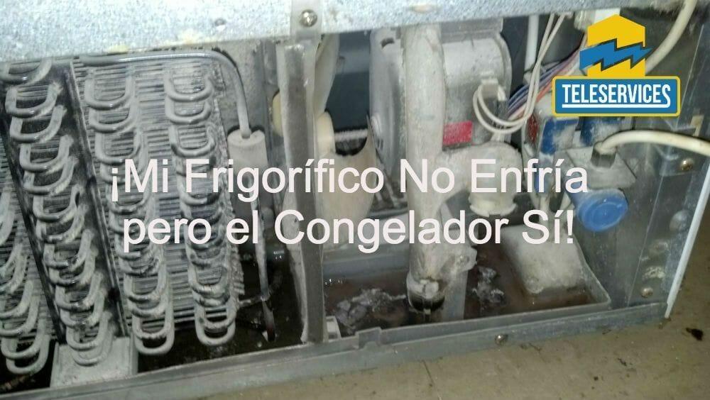 Mi frigor fico no enfr a pero el congelador s te lo for Frigorifico balay no enfria